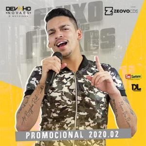 CAPA DEVINHO NOVAES PROMOCIONAL 2020 2